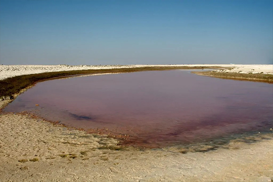 Kahil-Pink-Lagoons-A-1024x683